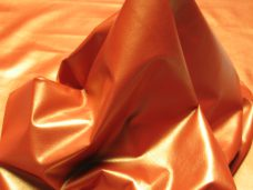 Home Pearlized-Orange-228x171