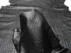 Home imprinted_alligator_black-228x171