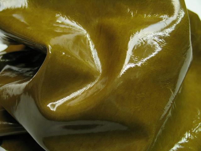 patent mustard