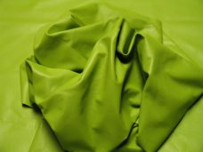 Home Std-Lime-Green1-228x171