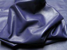 Home Std-Purple2-228x171