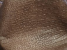 Home Crocodil-Brown2-228x171