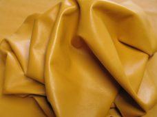 Home Std-Mustard2-228x171